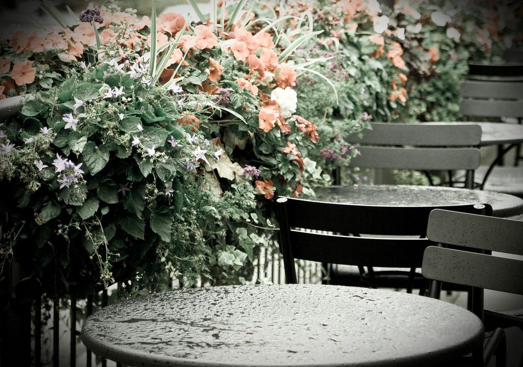 Rainy Cafés